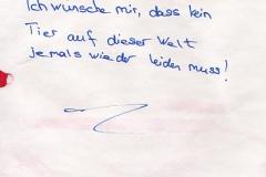 1_Wunsch__0065
